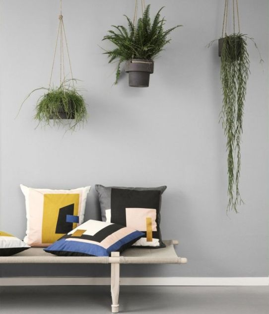 greyback-hanging-plants-housebeautiful-couk